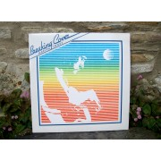 Breaking Cover Vinyl LP (1981)